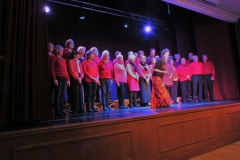 Charity Concert Somerton